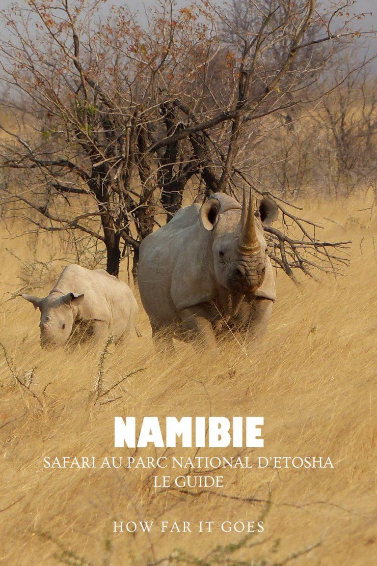 Rhinocéros avec son bébé à Etosha