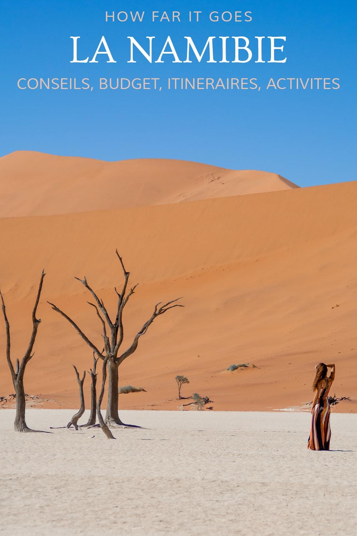 Voyager en Namibie
