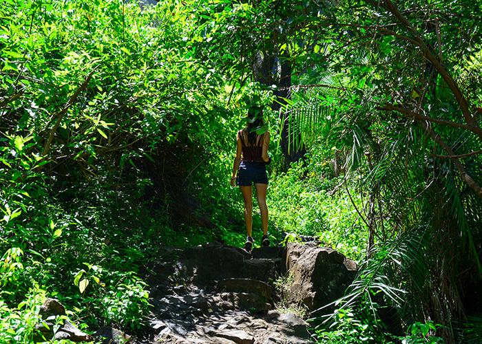 Chemin pour accéder à la piscine naturelle vers les chutes Victoria en Zambie