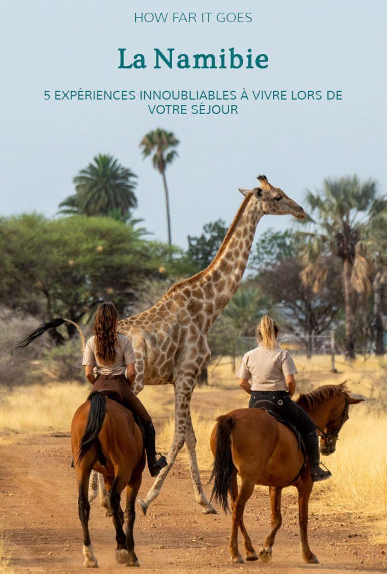 Femmes à cheval devant une girafe qui traverse la route